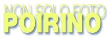 sponsor 2 : aurora abbigliamento Logo_210